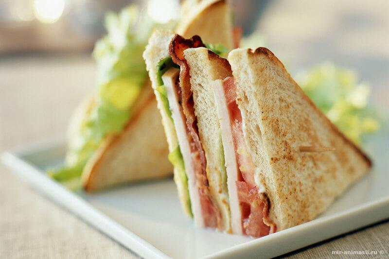 День бутерброда - 3 ноября