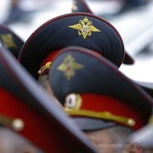 День образования инспекции по личному составу МВД 2020 - 28 2020 февраля