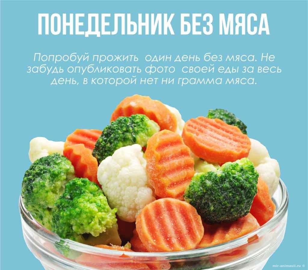 Международный день без мяса - 20 марта