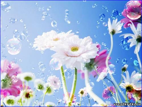 Весенняя открытка~Весна