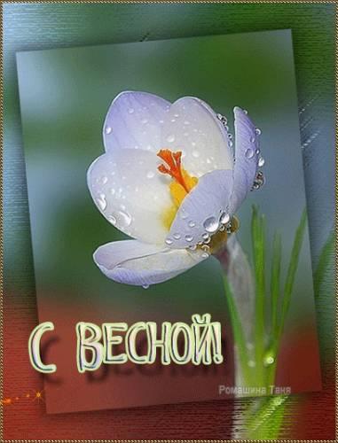 Весна похожая~Весна