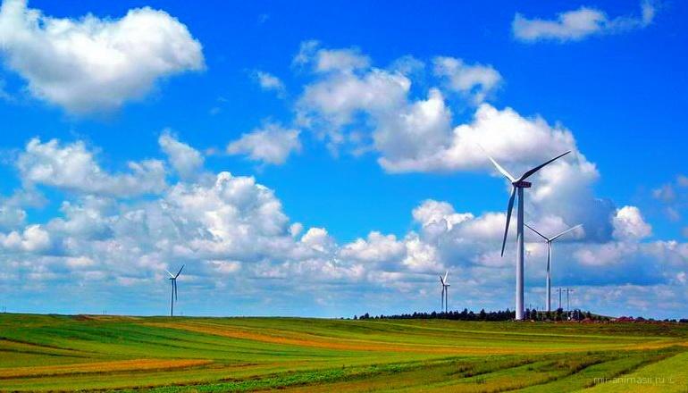 Всемирный день ветра - 15 июня