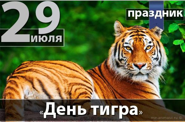Международный день тигра - 29 июля