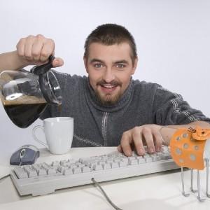 День программиста 2019 - 13 2019 сентября