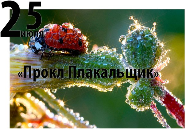Прокл Плакальщик - 25 июля