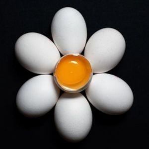 Всемирный день яйца 2017 - 9 октября