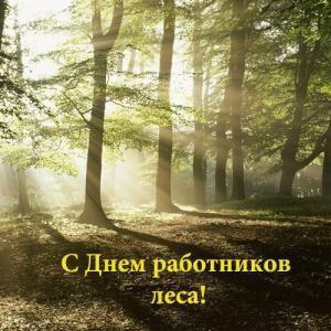 День работника леса 2019 - 18 2019 сентября