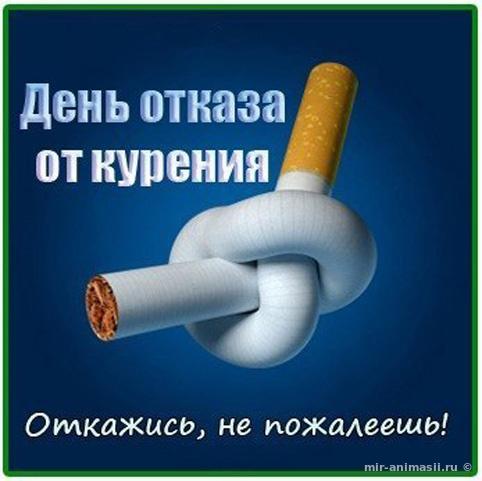 Международный день отказа от курения - 20 ноября