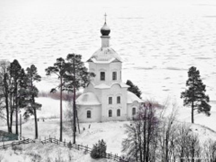 Федор Мороз - 24 ноября