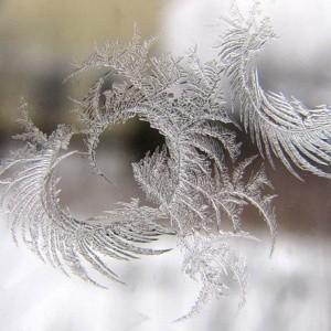 Первый день зимы 2017 - 1 декабря