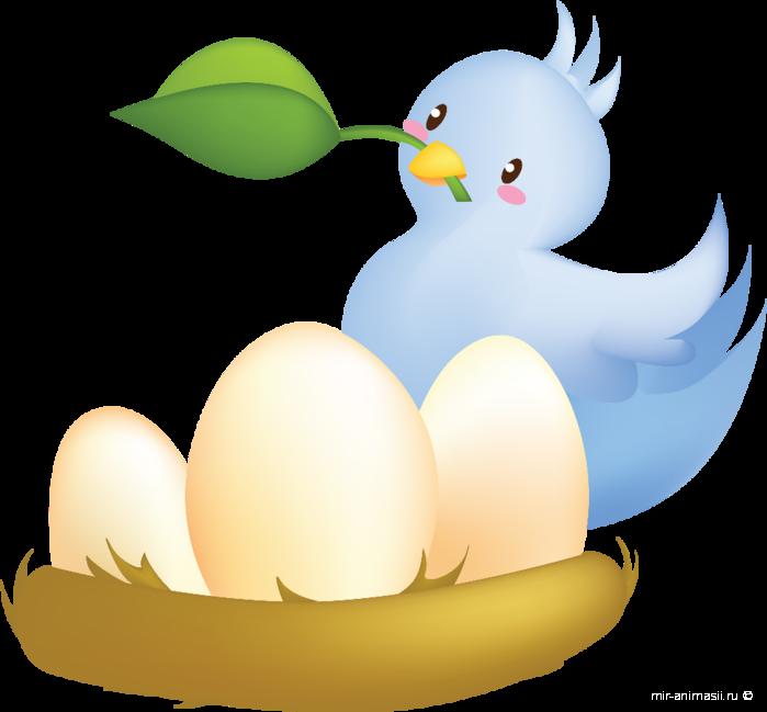 Международный день рисования птиц - 8 апреля