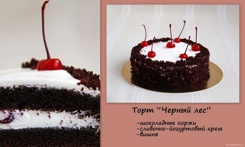 День торта «Черный лес» - 28 марта