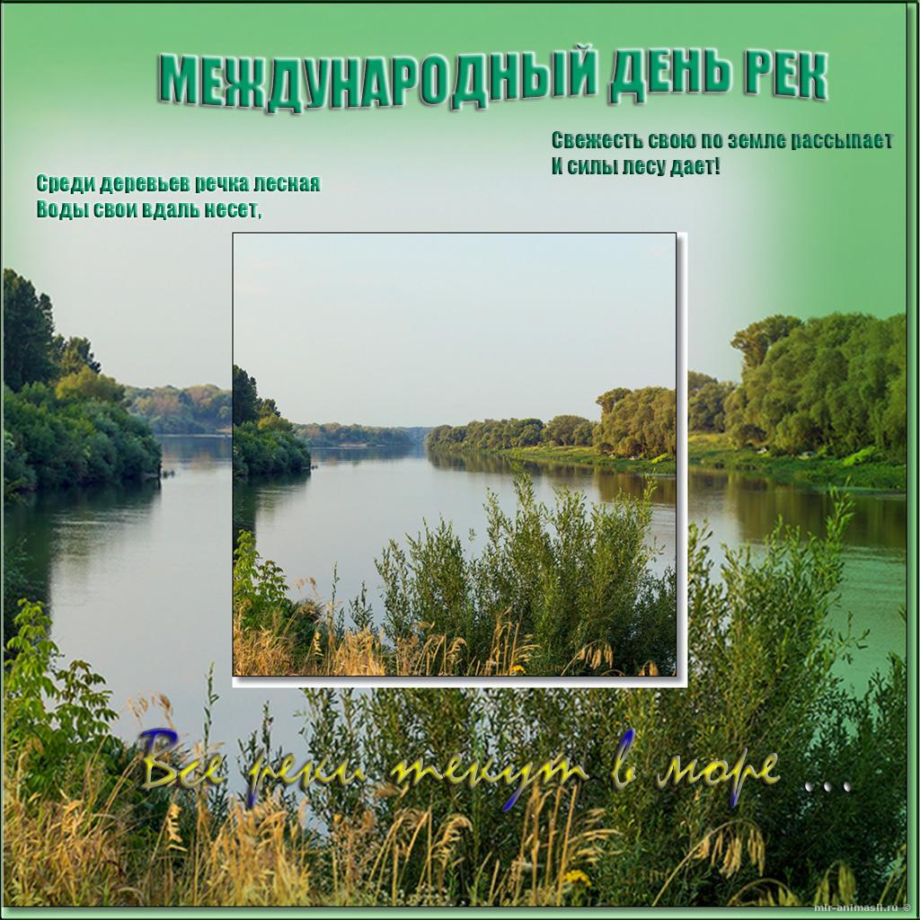 Международный день рек - 14 марта