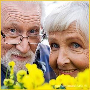 Международный день пожилых людей 2017 - 1 октября
