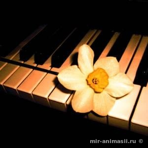Международный день музыки 2018 - 1 октября