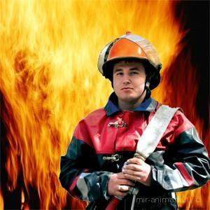 День пожарной охраны 2016 - 30 апреля