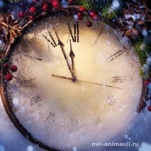 Канун Старого Нового Года 2018 - 13 января