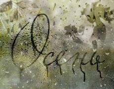 Дождь - это слёзы осени