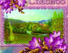 Анимационная открытка СПАСИБО