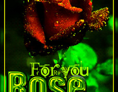 For you Rose